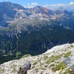 Biodiversitäts-Monitoring Südtirol