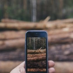 Faszination Smartphone-Fotos