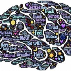 Psico-fisiologia: l'armonia tra mente e corpo