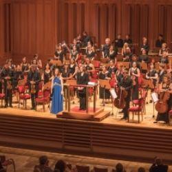 Gustav Mahler Orchestra Toblach