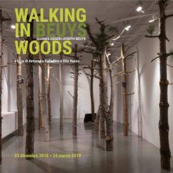 Hannes Egger: Walking in Beuys Woods
