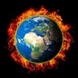 Le piante e i cambiamenti climatici