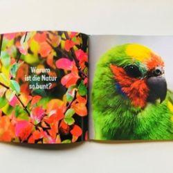 La passione di vedere. Leggere libri fotografici nell'infanz