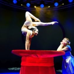Le Cirque World's Top Performers: ALIS Christmas Gala