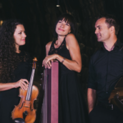 World Music Festival - Cordes y Butons