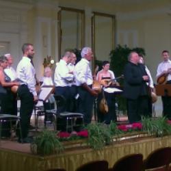 Concerto dell'orchestra mandolinistica