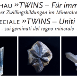 TWINS – Für immer zu zweit