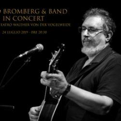 David Bromberg