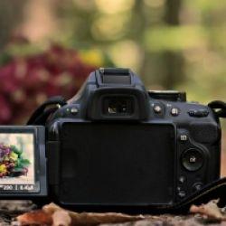 Fotoworkshop mit XanderLuchs Fotografie