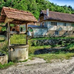On the road: Zu fünft in Siebenbürgen