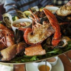 Kochkurs: Fisch und Meeresfrüchte