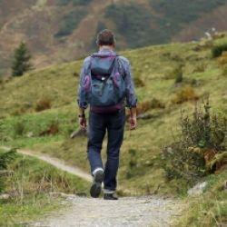 Der alte Haflinger Weg von Labers nach Meran