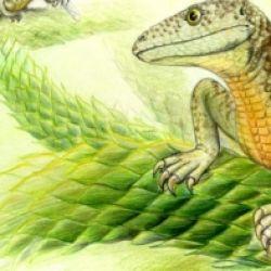 I Rettili Triassici delle Dolomiti