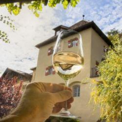 Degustazione di vini Azienda vinicola Köfelgut