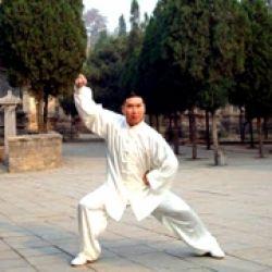 Tai Chi Yang Stil mit Großmeister Shi Yong Dao vom Shaolin T