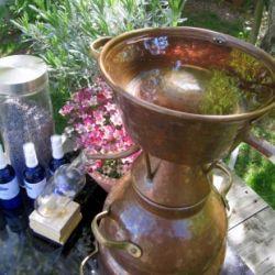 Hydrolate und ätherische Öle selbst herstellen