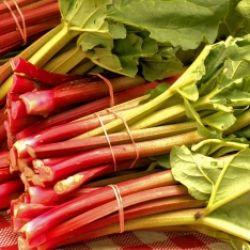 Kochkurs: Rhabarber - Das Gemüse mit Sti(e)l