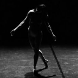 BZ Danza: Luna Cenere / NATURAL GRAVITATION