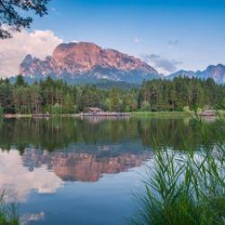 Alpe di Siusi Balance: Forza mentale di bosco e radici