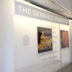 THE SENSIBLE PRACTICE