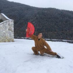Taiji Yang con ventaglio