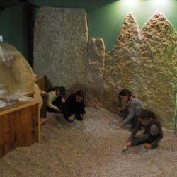 Dolomythos - Il museo del Patrimonio Naturale
