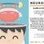 Neurobica: la ginnastica del cervello