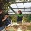 Autunno ai Giardini - Una Giornata per le famiglie