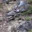 Geotrail Bulla. Escursione guidata in Val Gardena