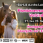 Workshop Gewaltfreie Pferdkommunikation & Verbindung in der Bergnatur auf 1839m